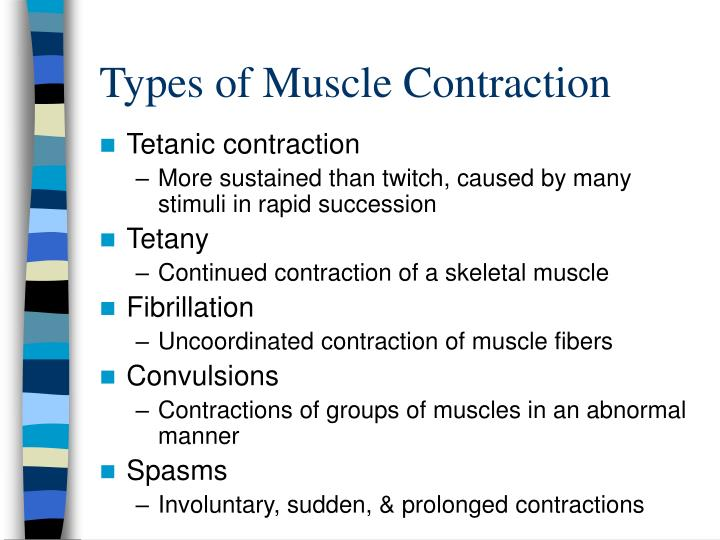 Types of Muscle Contraction