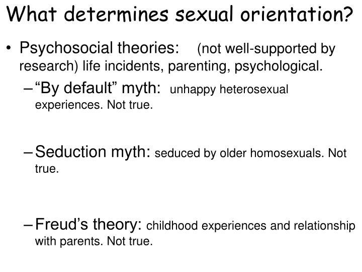 What determines sexual orientation?