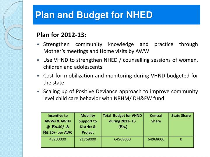 Plan and Budget for NHED