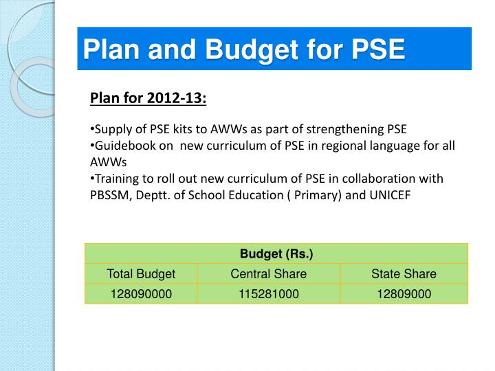 Plan and Budget for PSE