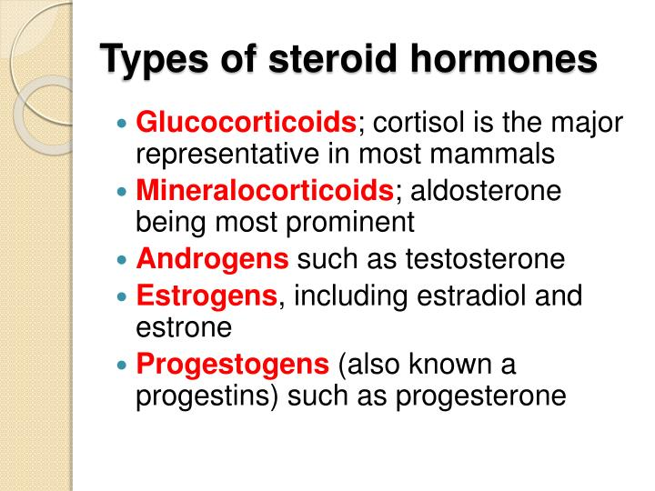 testosterone secreted by
