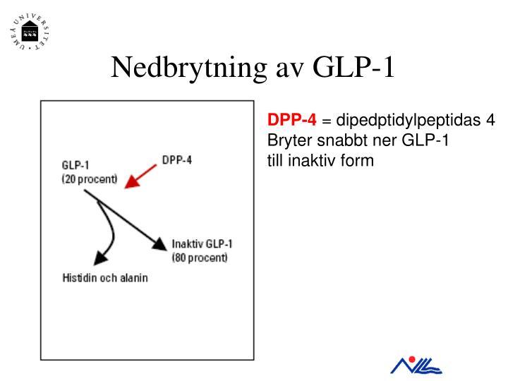 Nedbrytning av GLP-1