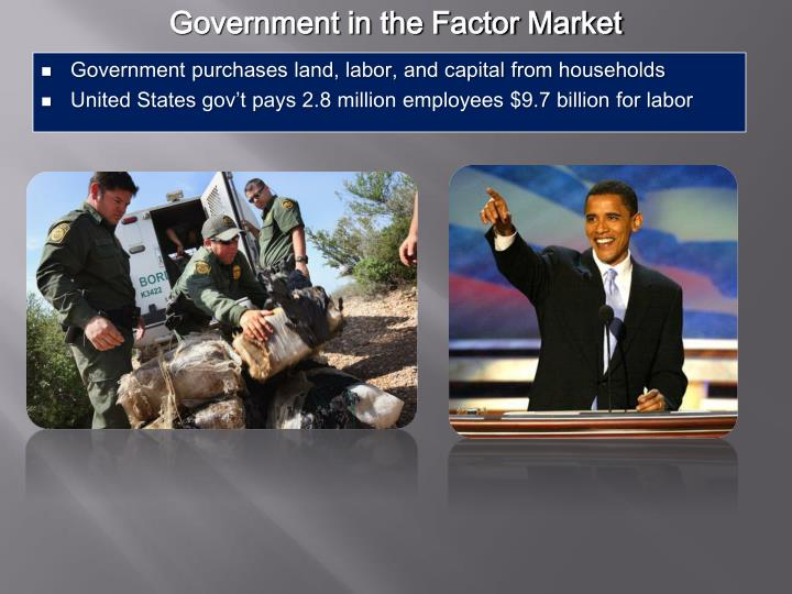 Government in the Factor Market