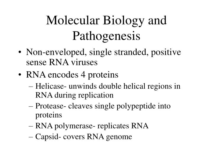 Molecular Biology and Pathogenesis