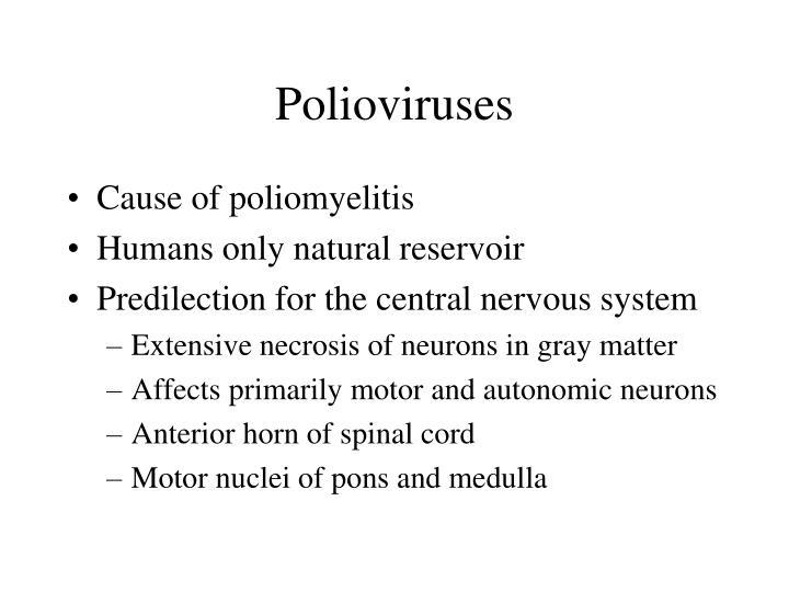 Polioviruses