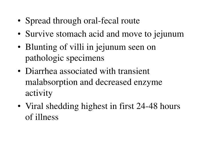 Spread through oral-fecal route