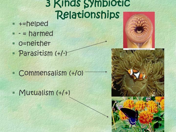 3 Kinds Symbiotic Relationships