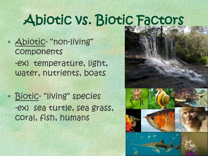 Abiotic vs. Biotic Factors