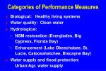 categories of performance measures