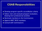 csab responsibilities