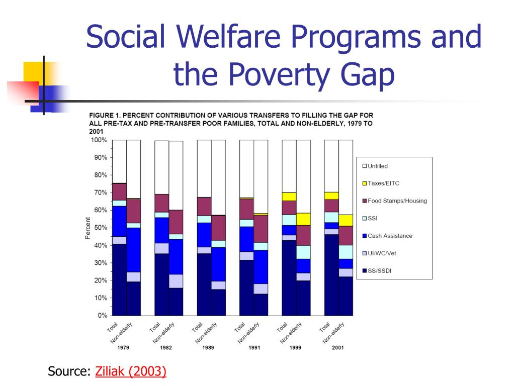 Social Welfare Programs and the Poverty Gap