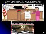 gay marriage amendment