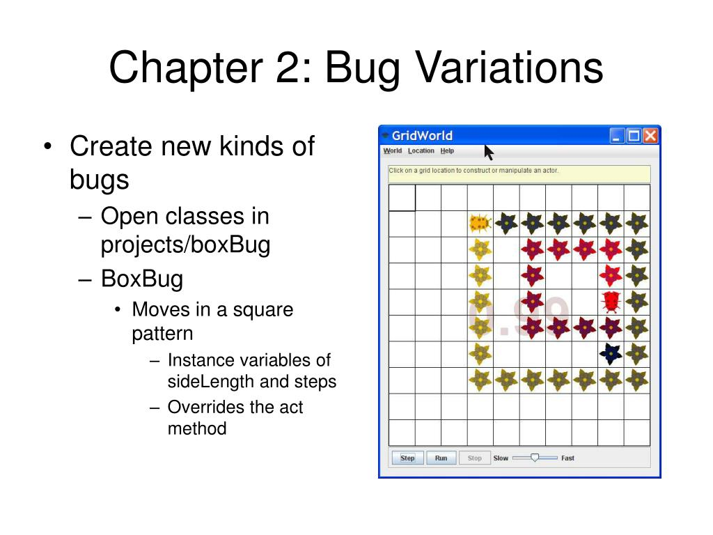 Chapter 2: Bug Variations