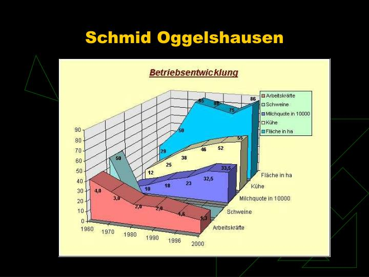 Schmid Oggelshausen