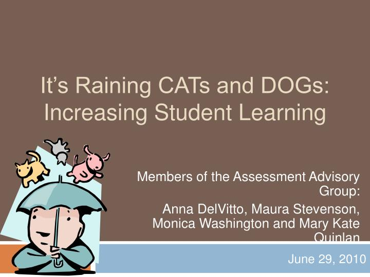 it s raining cats and dogs increasing student learning n.