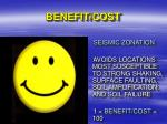 benefit cost17