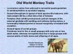 old world monkey traits24