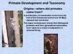 primate development and taxonomy