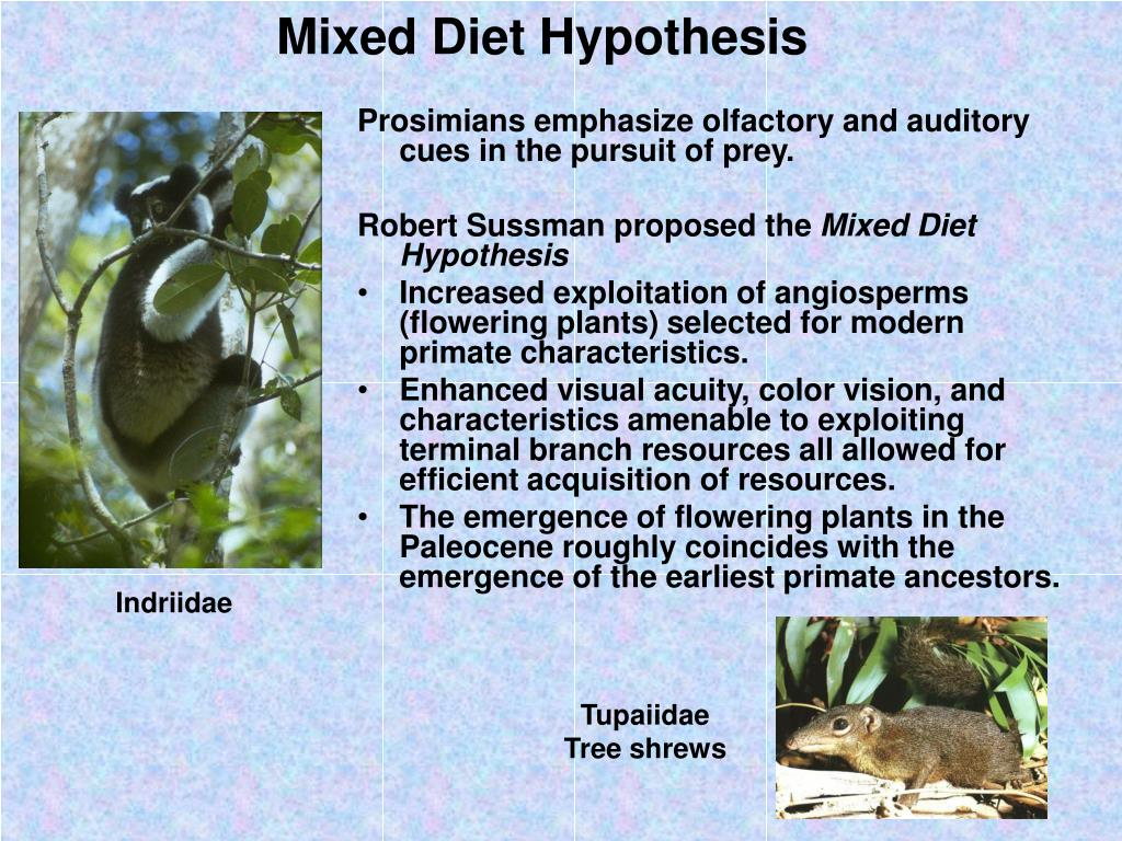 Mixed Diet Hypothesis
