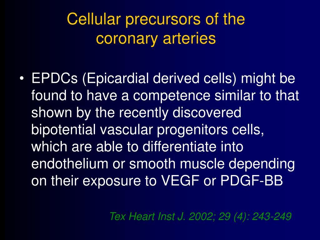 Cellular precursors of the