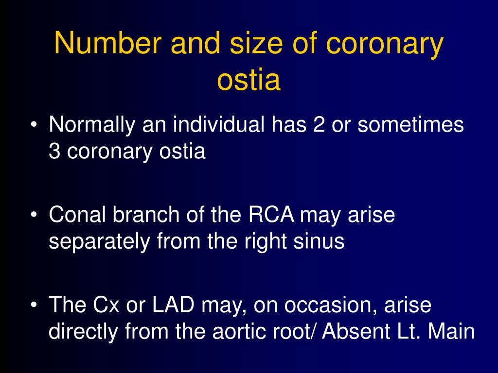 Number and size of coronary ostia