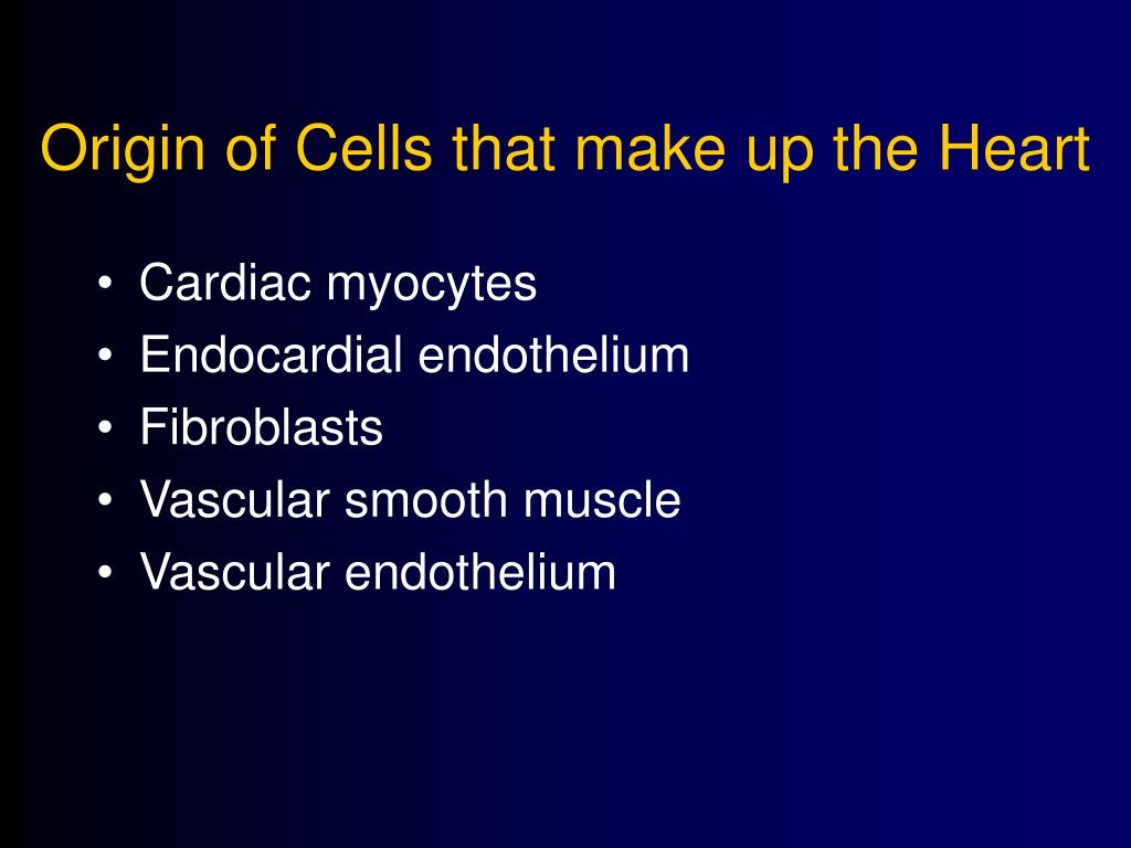 Origin of Cells that make up the Heart