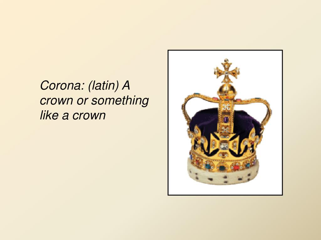 Corona: (latin) A crown or something like a crown