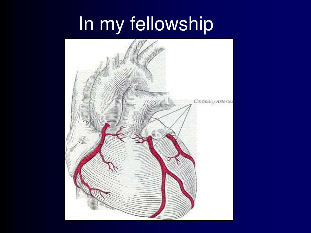 In my fellowship