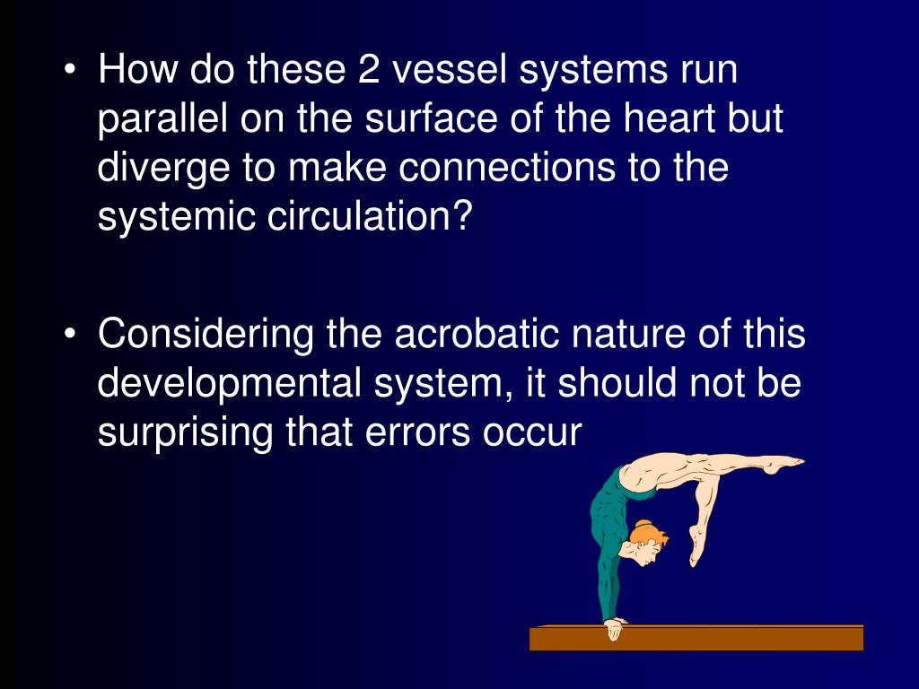 How do these 2 vessel systems run parallel on the surface of the heart but diverge to make connections to the systemic circulation?