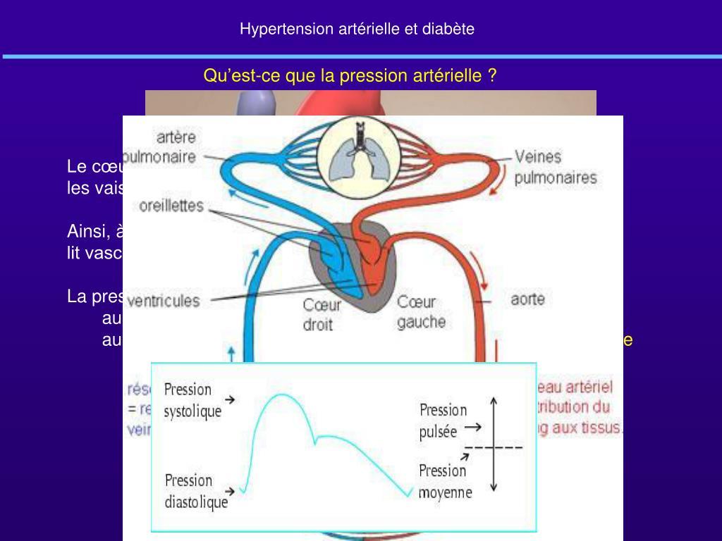 PPT - Hypertension artérielle et diabète PowerPoint..