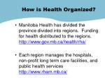 how is health organized1