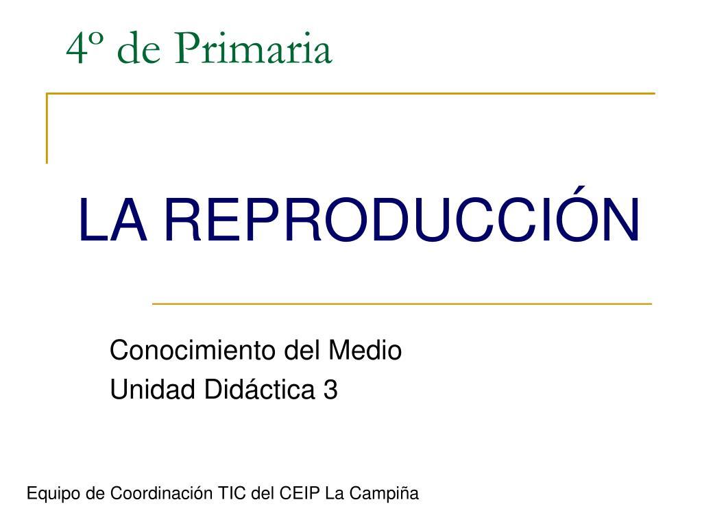 PPT - 4º de Primaria PowerPoint Presentation - ID:1407188