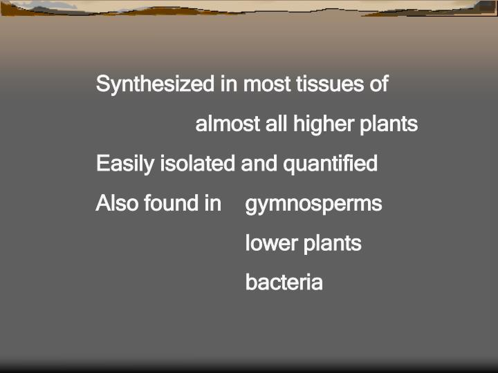 Synthesized in most tissues of