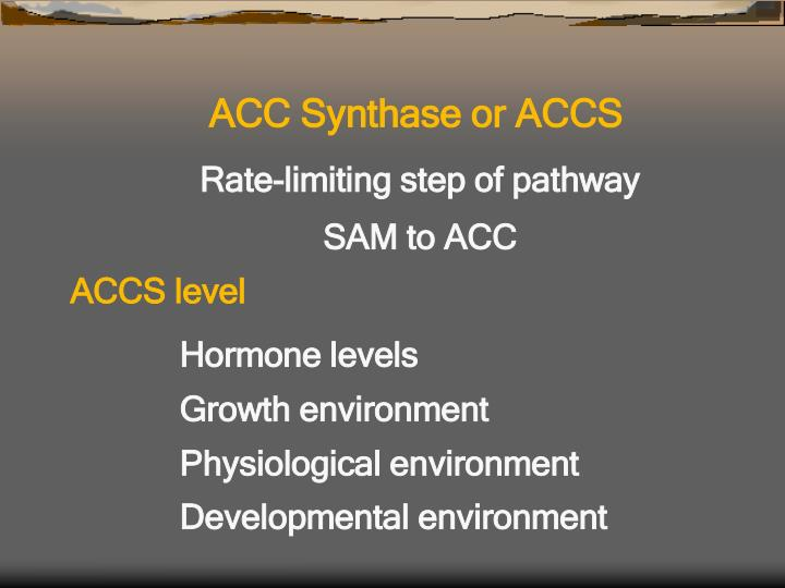 ACC Synthase or ACCS