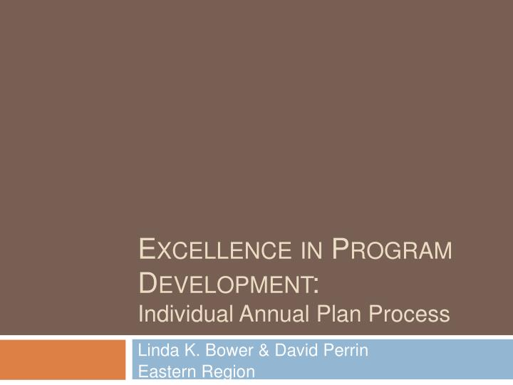 excellence in program development individual annual plan process n.