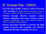 tc strategic plan vision