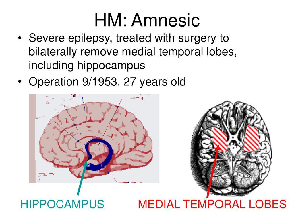 HM: Amnesic