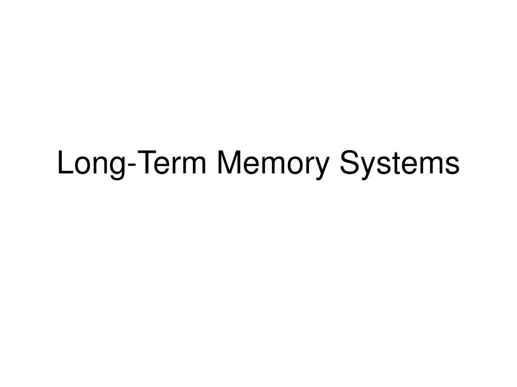 Long-Term Memory Systems