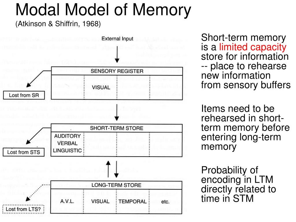 Modal Model of Memory