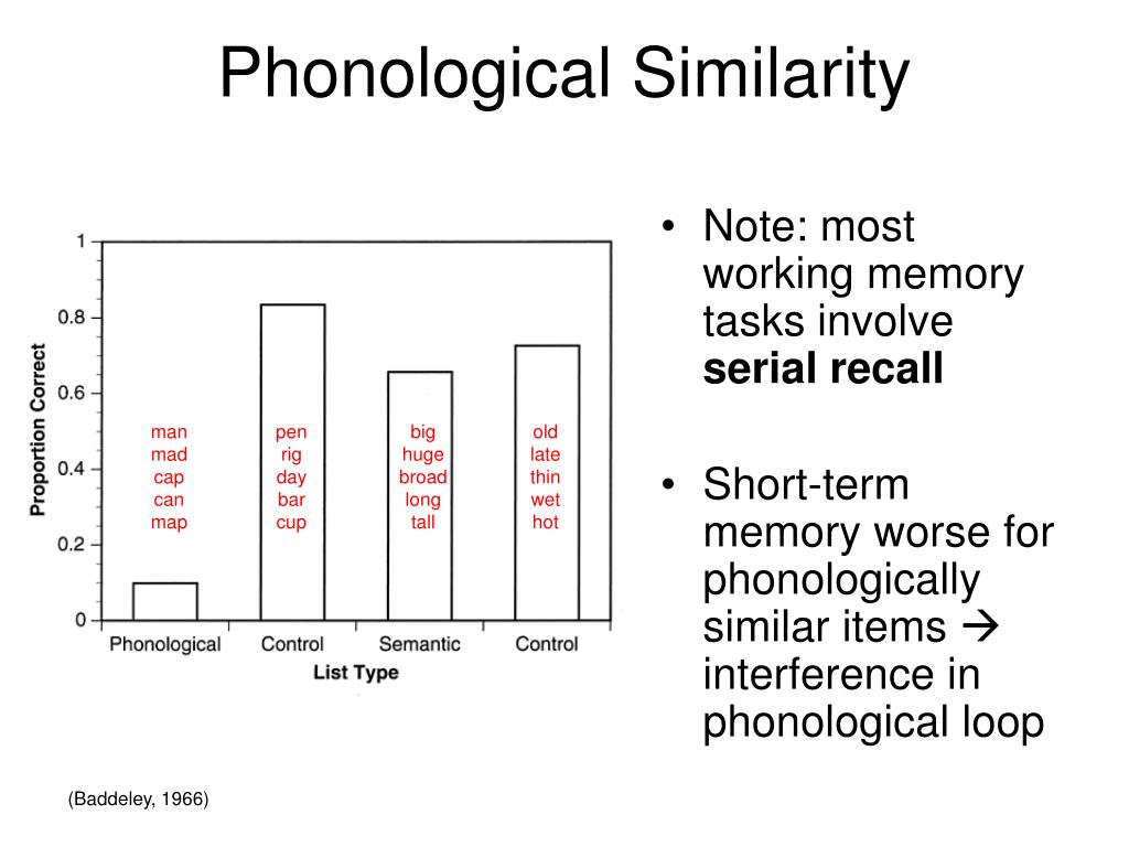 Note: most working memory tasks involve