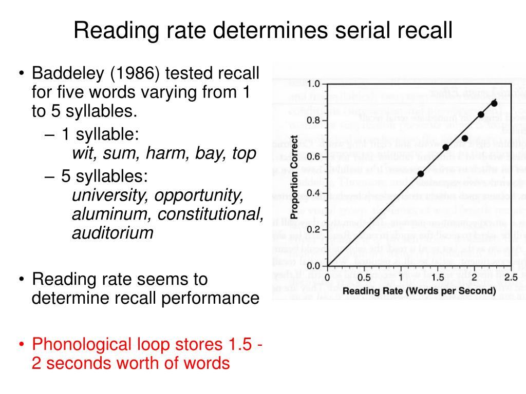 Reading rate determines serial recall