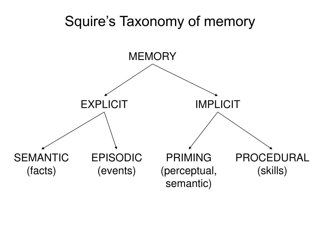 Squire's Taxonomy of memory