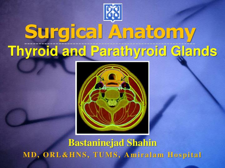 surgical anatomy thyroid and parathyroid glands n.