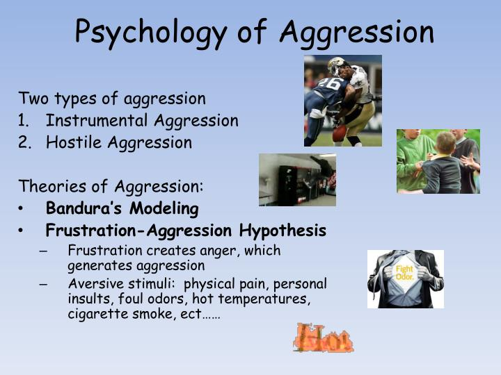 Psychology of Aggression