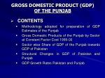 gross domestic product gdp of the punjab
