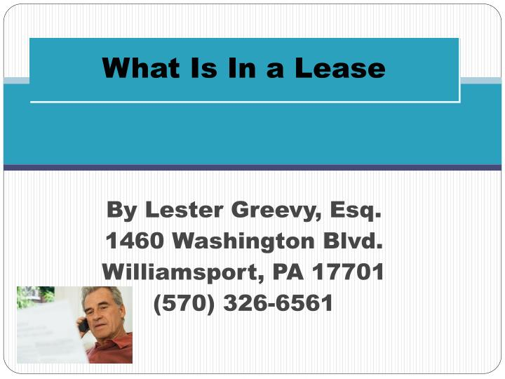 what is in a lease n.