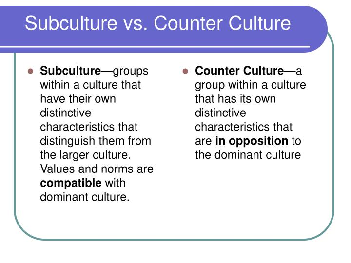 subculture vs counter culture n.