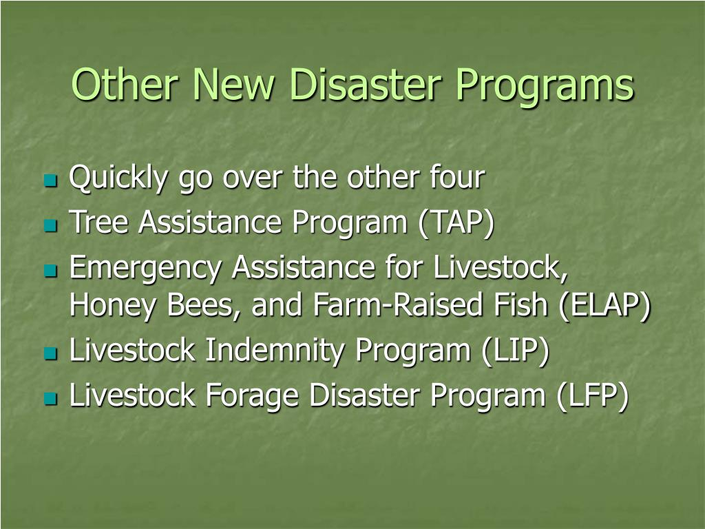 Other New Disaster Programs
