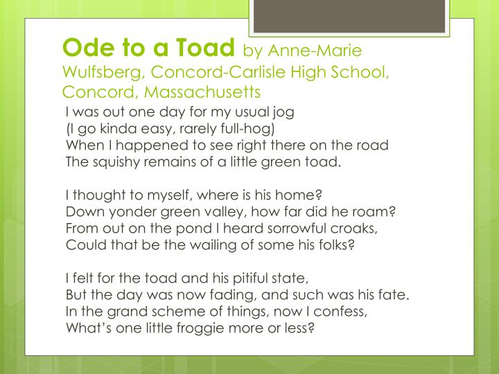 Ode to a Toad