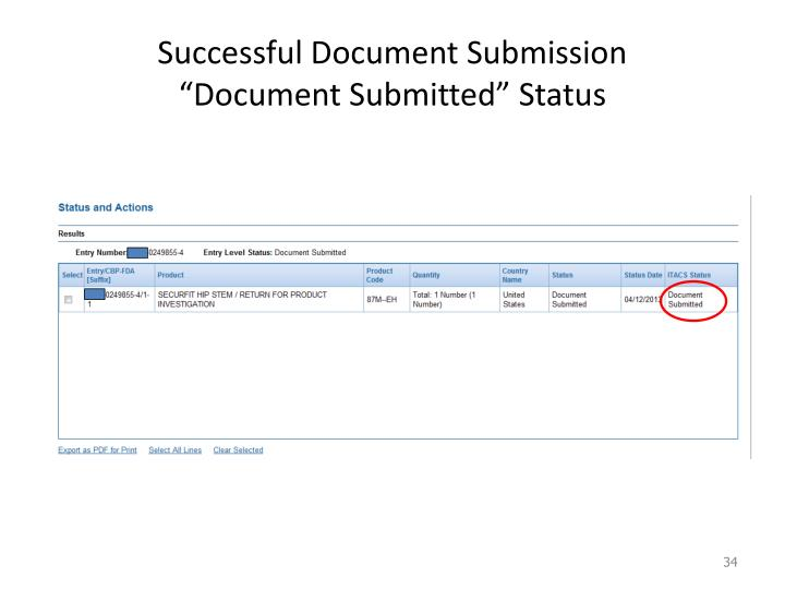 Successful Document Submission